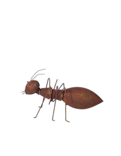 Mrówka Rdzewiona Mała - Dekoracja